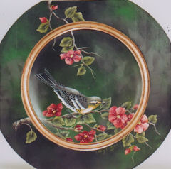 sn-graces-warbler-1914011-sm-c.jpg