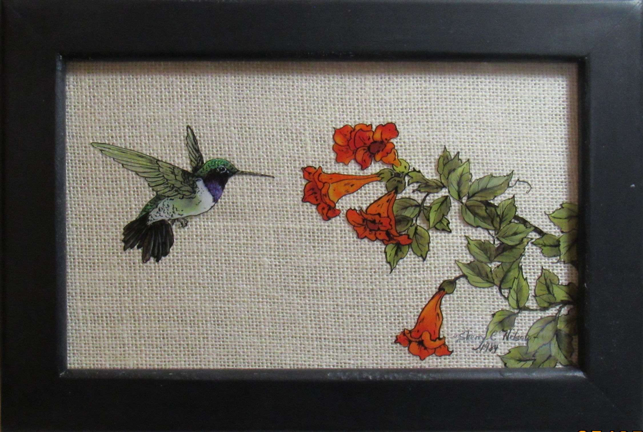 sn-hummingbird-and-frame-20170505.jpg